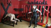Herrin-Jessy – Bullwhip-Abstrafung